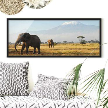 Bild mit Rahmen - Elefanten vor dem Kilimanjaro in Kenya - Panorama Querformat