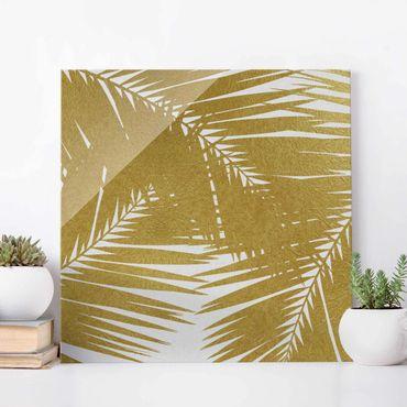 Glasbild - Blick durch goldene Palmenblätter - Quadrat