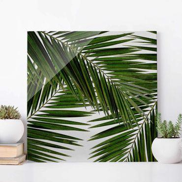 Glasbild - Blick durch grüne Palmenblätter - Quadrat