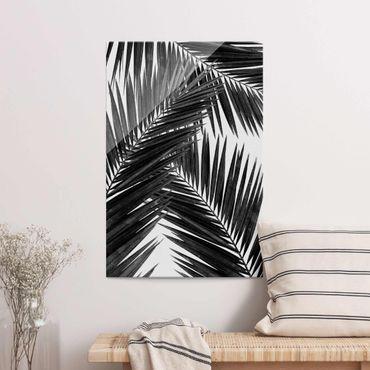 Glasbild - Blick durch Palmenblätter schwarz weiß - Hochformat