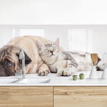 Küchenrückwand - Beste Freunde