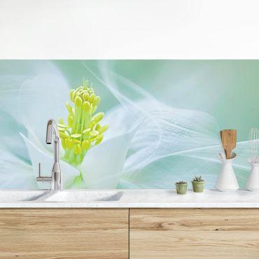 Küchenrückwand - Weiße Akelei
