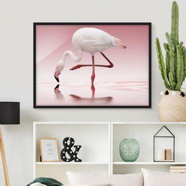 Bild mit Rahmen - Flamingo Dance - Querformat 3:4