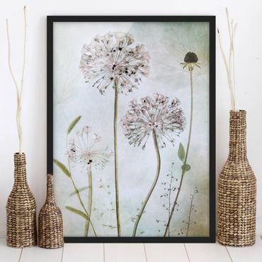 Bild mit Rahmen - Lauchblüten in Pastell - Hochformat 4:3