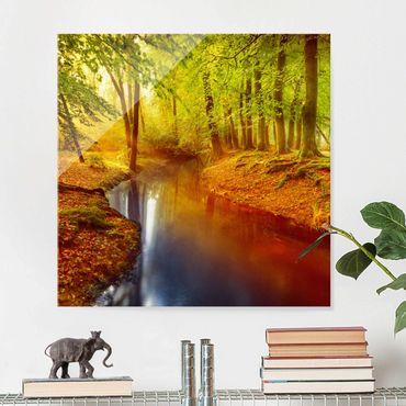 Glasbild - Herbstwald - Quadrat 1:1 - Waldbild Glas