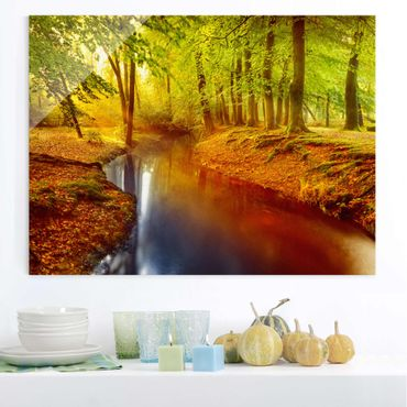 Glasbild - Herbstwald - Quer 4:3 - Waldbild Glas