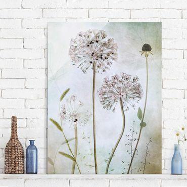 Glasbild - Lauchblüten in Pastell - Hochformat 4:3