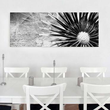 Glasbild - Pusteblume Schwarz & Weiß - Panorama Quer