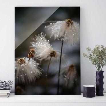 Glasbild - Pusteblumen mit Schneeflocken - Hochformat 4:3