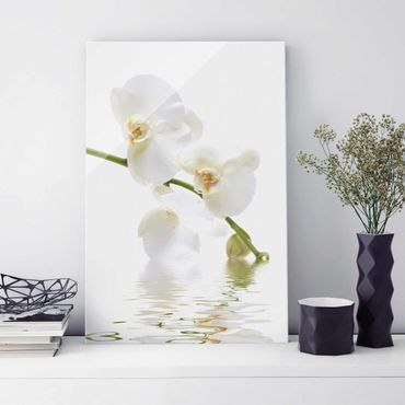Glasbild - White Orchid Waters - Hoch 2:3