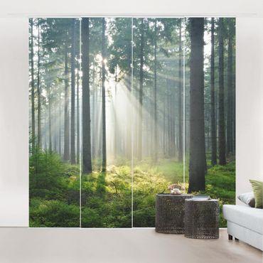 Schiebegardinen Set - Enlightened Forest - Flächenvorhänge
