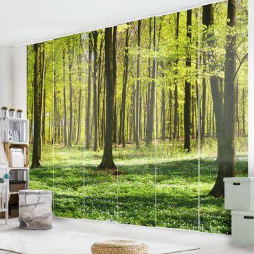 Schiebegardinen Set - Waldwiese - Flächenvorhänge