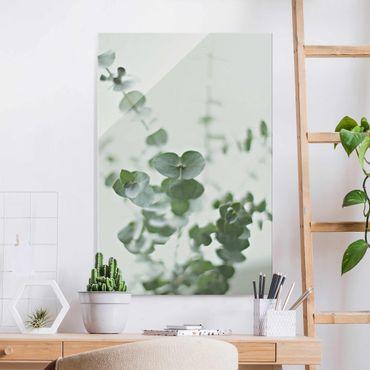 Glasbild - Wachsende Eukalyptuszweige - Hochformat