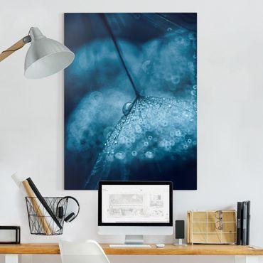Leinwandbild - Blaue Pusteblume im Regen - Hochformat 4:3