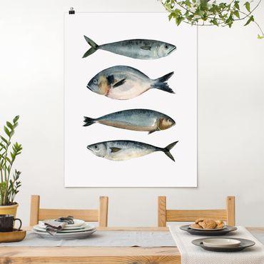 Poster - Vier Fische in Aquarell II - Hochformat 3:4