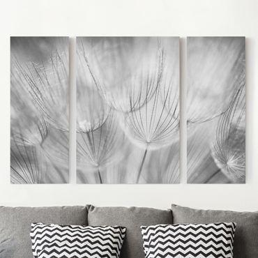 Leinwandbild 3-teilig - Pusteblumen Makroaufnahme in schwarz weiß - Triptychon