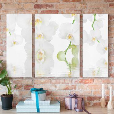 Leinwandbild 3-teilig - Wellness Orchidee - Weiße Orchidee - Triptychon