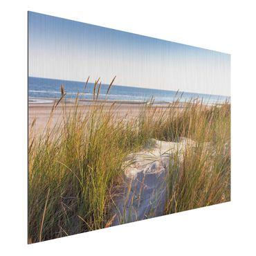 Aluminium Print gebürstet - Stranddüne am Meer - Querformat 2:3