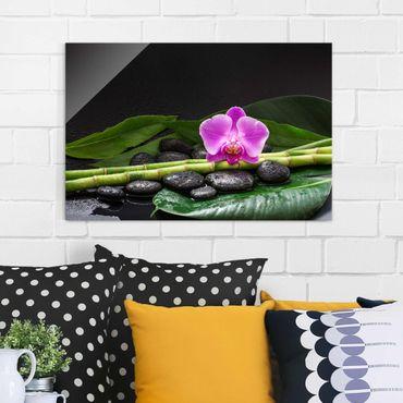 Glasbild - Grüner Bambus mit Orchideenblüte - Querformat 2:3