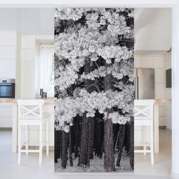 Raumteiler - Wald mit Raureif in Österreich 250x120cm