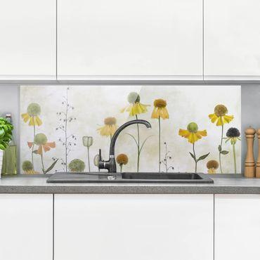 Spritzschutz Glas - Zarte Helenium Blüten - Panorama - 5:2
