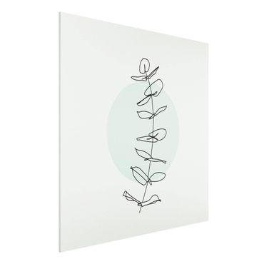 Forex Fine Art Print - Zweig Geometrie Kreis Line Art - Quadrat 1:1