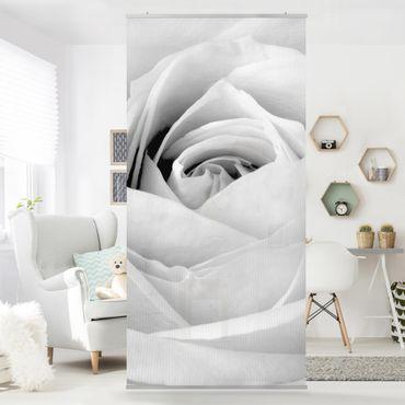 Raumteiler - Close Up Rose 250x120cm