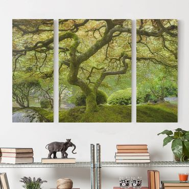 Leinwandbild 3-teilig - Grüner Japanischer Garten - Triptychon