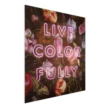 Forex Fine Art Print - Jonas Loose - Live Color Fully - Quadrat 1:1
