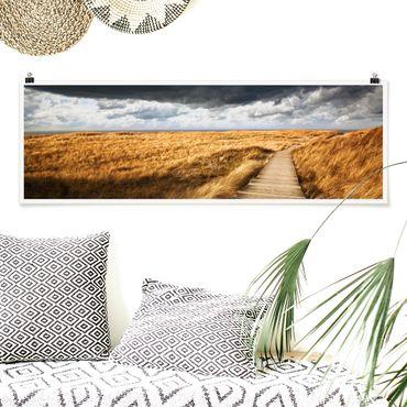 Poster - Weg in den Dünen - Panorama Querformat