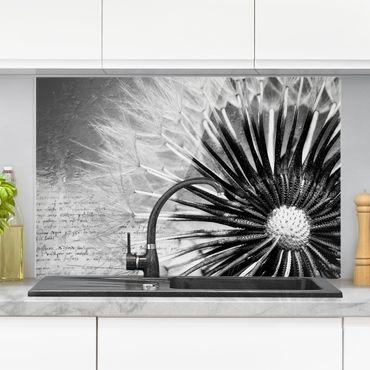 Spritzschutz Glas - Pusteblume Schwarz & Weiß - Querformat - 3:2