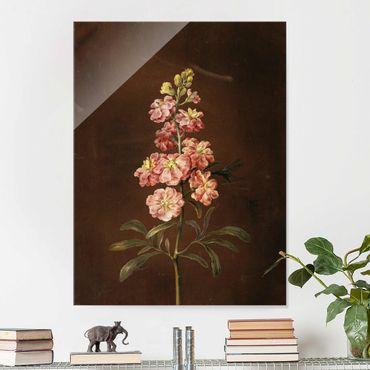 Glasbild - Barbara Regina Dietzsch - Eine rosa Garten-Levkkoje - Hochformat 4:3
