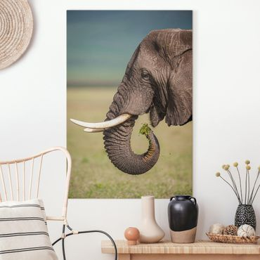 Leinwandbild - Elefantenfütterung Afrika - Hochformat 3:2