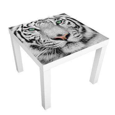 Möbelfolie für IKEA Lack - Klebefolie Weißer Tiger