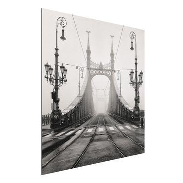 Alu-Dibond Bild - Brücke in Budapest