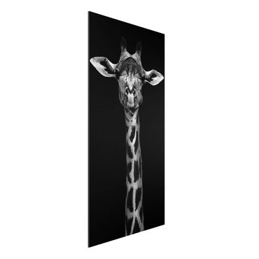 Aluminium Print - Dunkles Giraffen Portrait - Hochformat 2:1