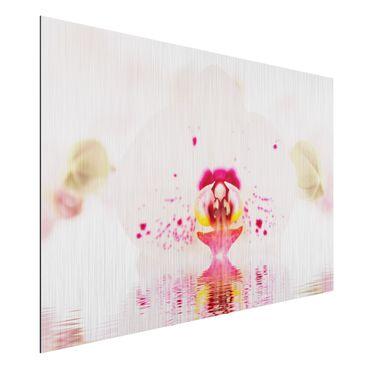 Alu-Dibond Bild - Gepunktete Orchidee auf Wasser