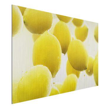 Alu-Dibond Bild - Zitronen im Wasser