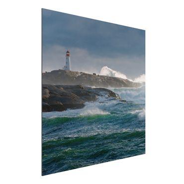 Alu-Dibond Bild - Im Schutz des Leuchtturms
