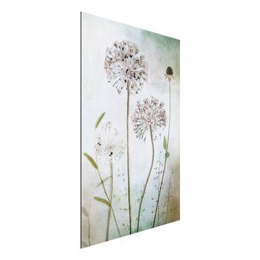 Aluminium Print - Lauchblüten in Pastell - Hochformat 3:2