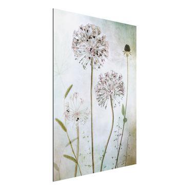 Aluminium Print - Lauchblüten in Pastell - Hochformat 4:3