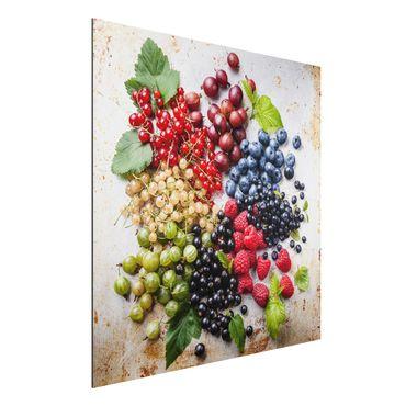 Alu-Dibond Bild - Mischung aus Beeren auf Metall