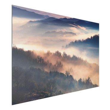 Alu-Dibond Bild - Nebel bei Sonnenuntergang