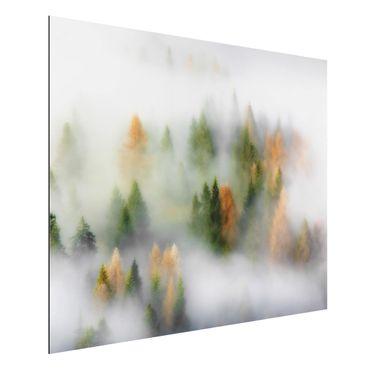 Aluminium Print - Nebelwald im Herbst - Querformat 3:4