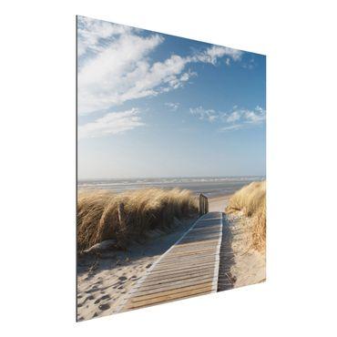 Alu-Dibond Bild - Ostsee Strand