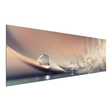 Alu-Dibond Bild - Story of a Waterdrop