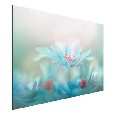 Alu-Dibond Bild - Zarte Blüten in Pastell