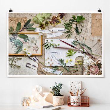 Poster - Blumen und Gartenkräuter Vintage - Querformat 2:3