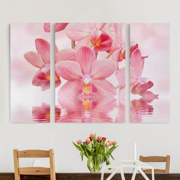 Leinwandbild 3-teilig - Rosa Orchideen auf Wasser - Triptychon