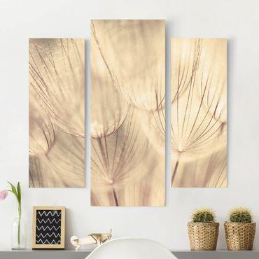 Leinwandbild 3-teilig - Pusteblumen Nahaufnahme in wohnlicher Sepia Tönung - Galerie Triptychon
